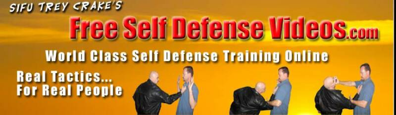 Free Self Defense Banner